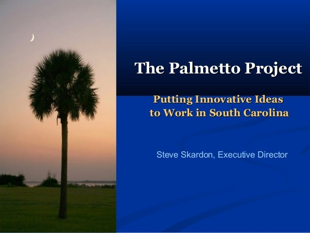 The Palmetto ProjectThe Palmetto Project Putting Innovative IdeasPutting Innovative Ideas to Work in South Carolinato Work...