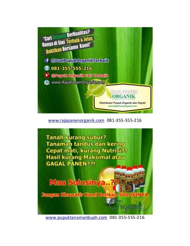www.rajapanenorganik.com 081-355-555-216 www.pupuktanamanbuah.com 081-355-555-216