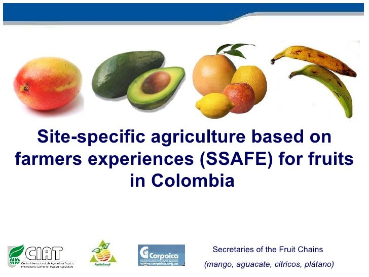 Site-specific agriculture based on farmers experiences (SSAFE) for fruits in Colombia   Secretaries of the Fruit Chains  (...