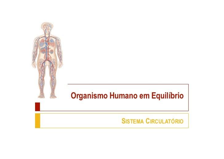 Organismo Humano em Equilíbrio             SISTEMA CIRCULATÓRIO