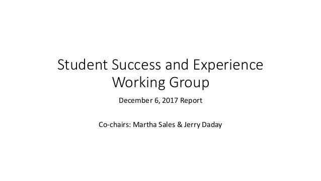 Student Success and Experience Working Group December 6, 2017 Report Co-chairs: Martha Sales & Jerry Daday