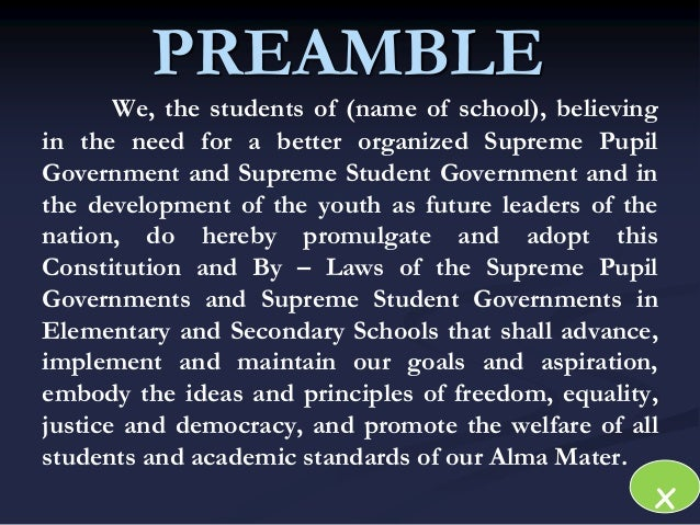 Preamble essay