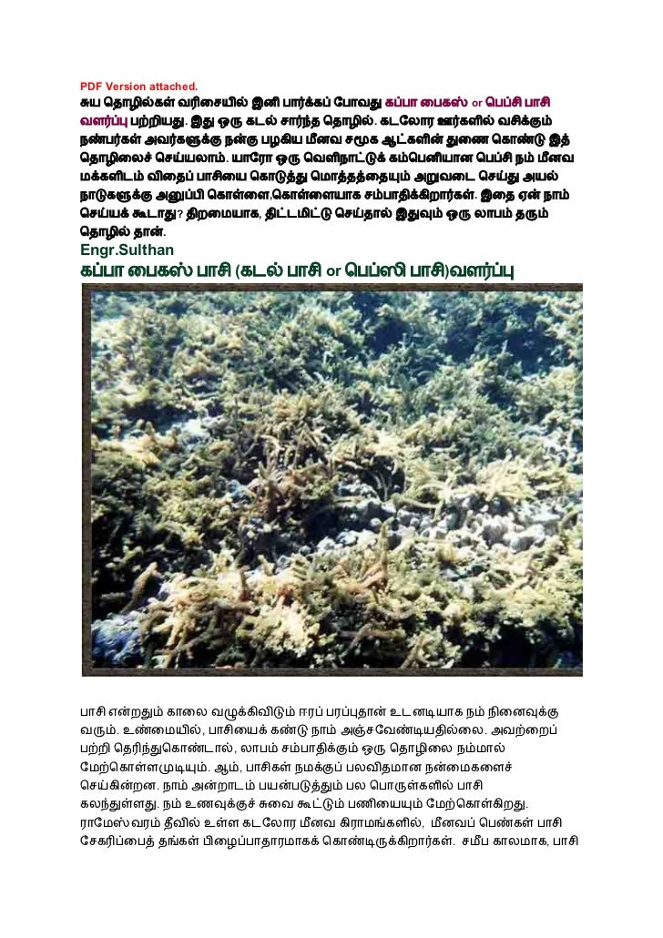 Business Ideas N Tamil Pdf Version Attached