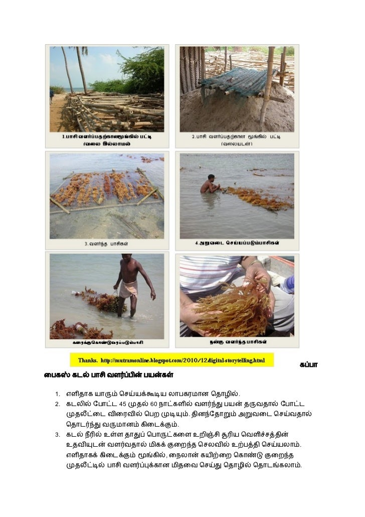 business ideas n tamil Slide 3