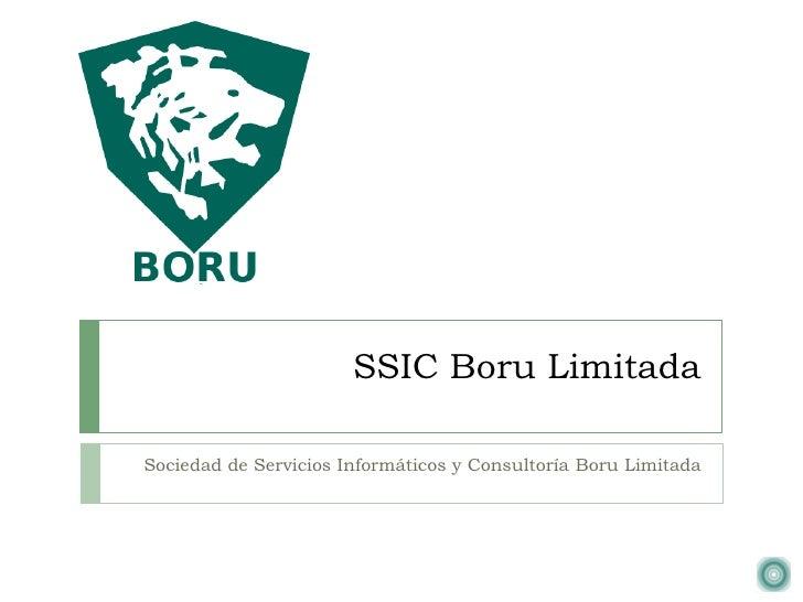 SSIC Boru LimitadaSociedad de Servicios Informáticos y Consultoría Boru Limitada