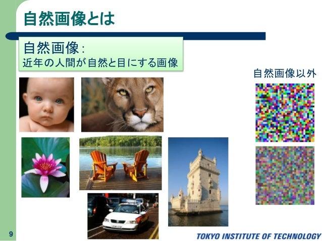 自然画像とは 9 自然画像: 近年の人間が自然と目にする画像 自然画像以外