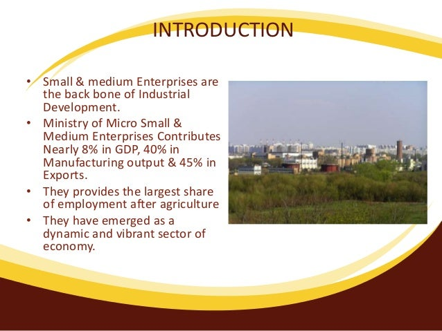 Medium And Micro Enterprise Sector Of