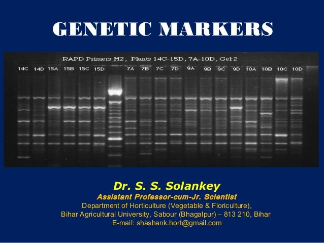 Genetic markers-SSS