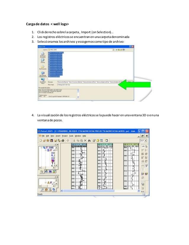 Carga de datos < well logs> 1. Clickderechosobre lacarpeta, Import (onSelection)… 2. Los registroseléctricosse encuentrane...