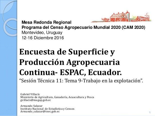Mesa Redonda Regional Programa del Censo Agropecuario Mundial 2020 (CAM 2020) Montevideo, Uruguay 12-16 Diciembre 2016 Gab...