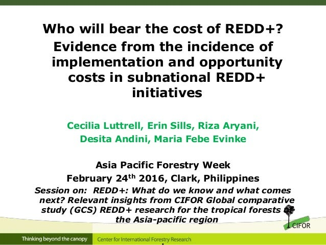 Who will bear the cost of REDD+? Evidence from the incidence of implementation and opportunity costs in subnational REDD+ ...