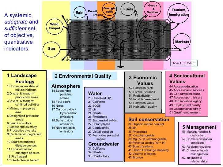 "the effects of ecosystem management on The effects of off-road vehicles on ecosystems or ""will cause"" considerable adverse effects to the ecosystem and restoration as a management objective is."