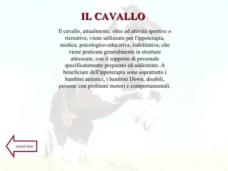 Il cavallo, attualmente, oltre ad attività sportive o ricreative, viene utilizzato per l'ippoterapia, medica, psicologico-...