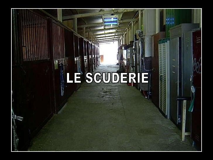 LE SCUDERIE