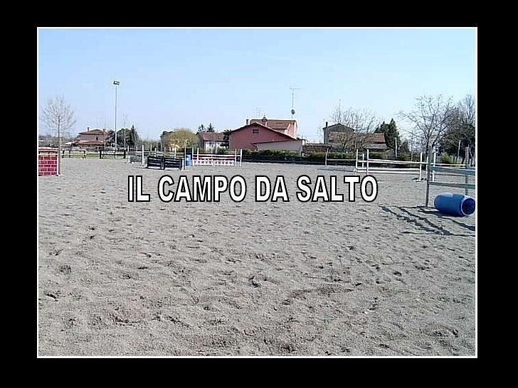 IL CAMPO DA SALTO