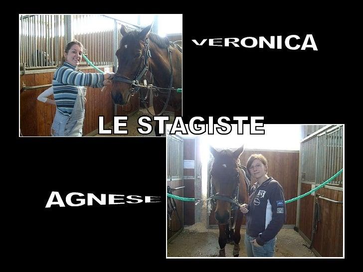 LE STAGISTE VERONICA AGNESE