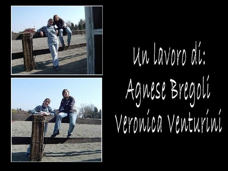 Un lavoro di: Agnese Bregoli  Veronica Venturini