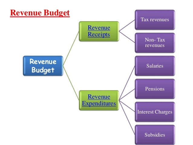 Image result for GOVERNMENT BUDGET- Revenue Account