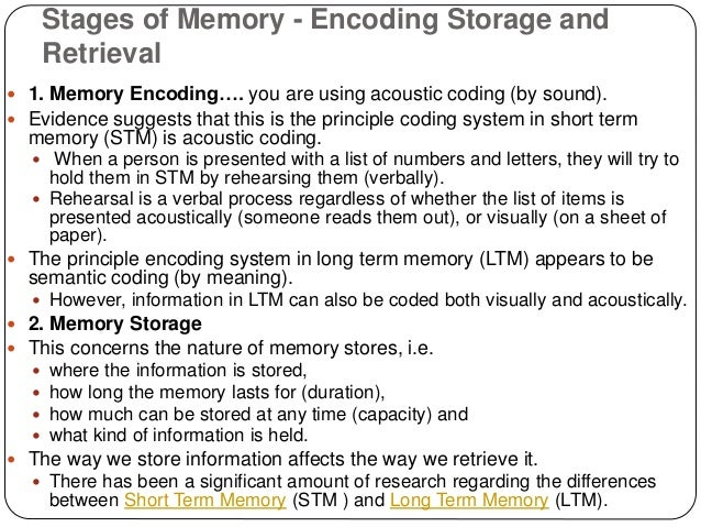 Memory Encoding Storage Retrieval  Noba