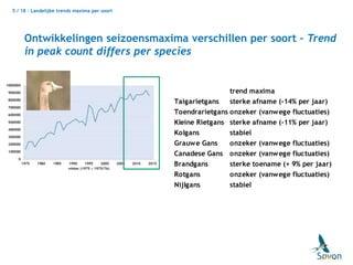 a72ef2db42a Ontwikkelingen overwinterende ganzen in Nederland in de afgelopen 10 …