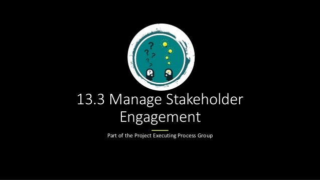 13.3 Manage Stakeholder Engagement Part of the Project Executing Process Group