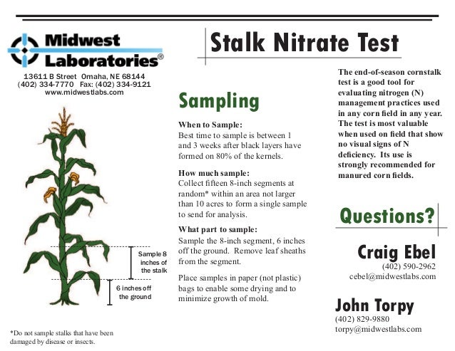 Stalk Nitrate Test 13611 B Street Omaha, NE 68144 (402) 334-7770 Fax: (402) 334-9121 www.midwestlabs.com 6 inches off the ...