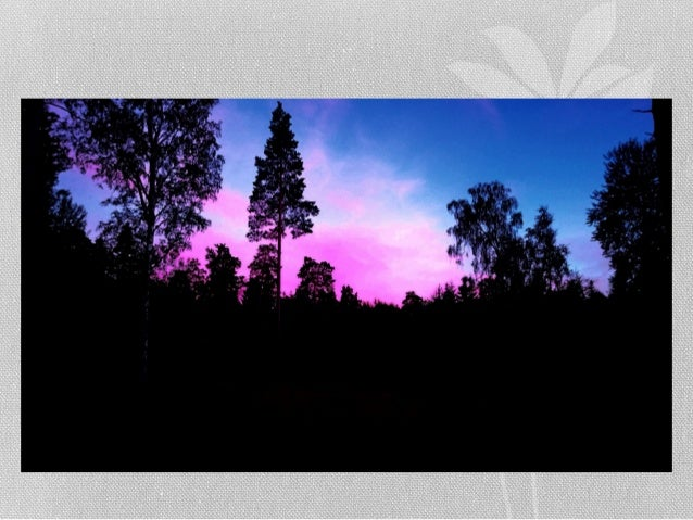 Stallet i Tyresö sent på kvällen av Ingemar Pongratz Slide 3
