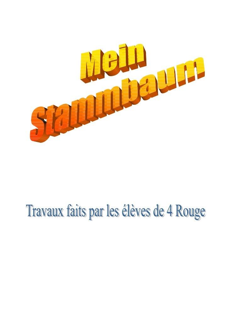 Stammbaum 4 Rot