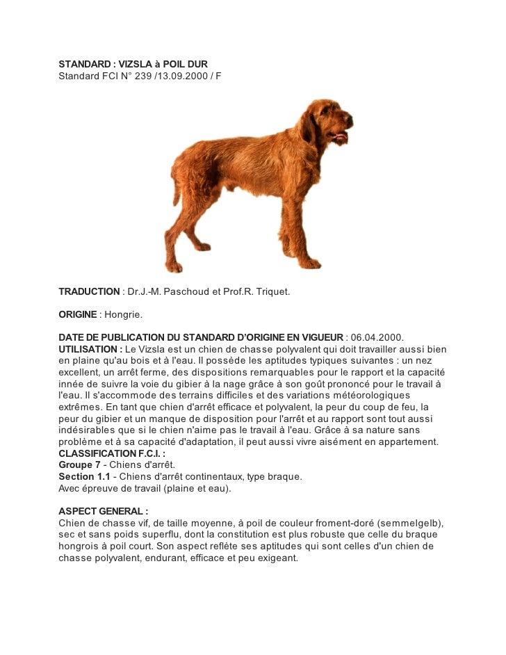STANDARD : VIZSLA à POIL DURStandard FCI N° 239 /13.09.2000 / FTRADUCTION : Dr.J.-M. Paschoud et Prof.R. Triquet.ORIGINE :...