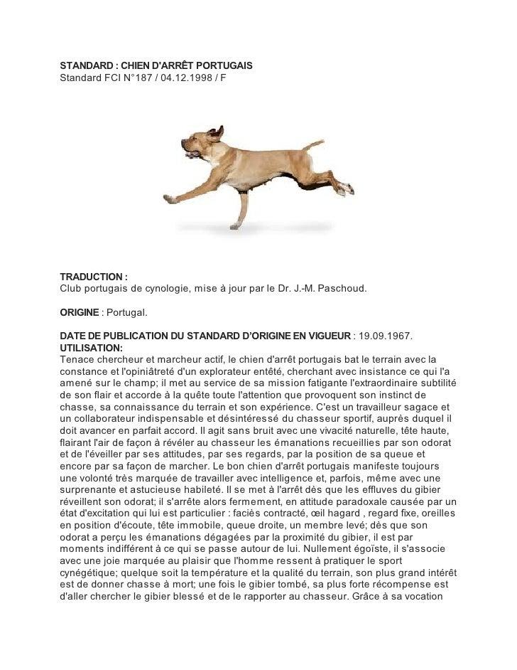 STANDARD : CHIEN DARRÊT PORTUGAISStandard FCI N°187 / 04.12.1998 / FTRADUCTION :Club portugais de cynologie, mise à jour p...