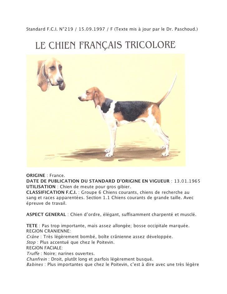 Standard F.C.I. N°219 / 15.09.1997 / F (Texte mis à jour par le Dr. Paschoud.)ORIGINE : France.DATE DE PUBLICATION DU STAN...