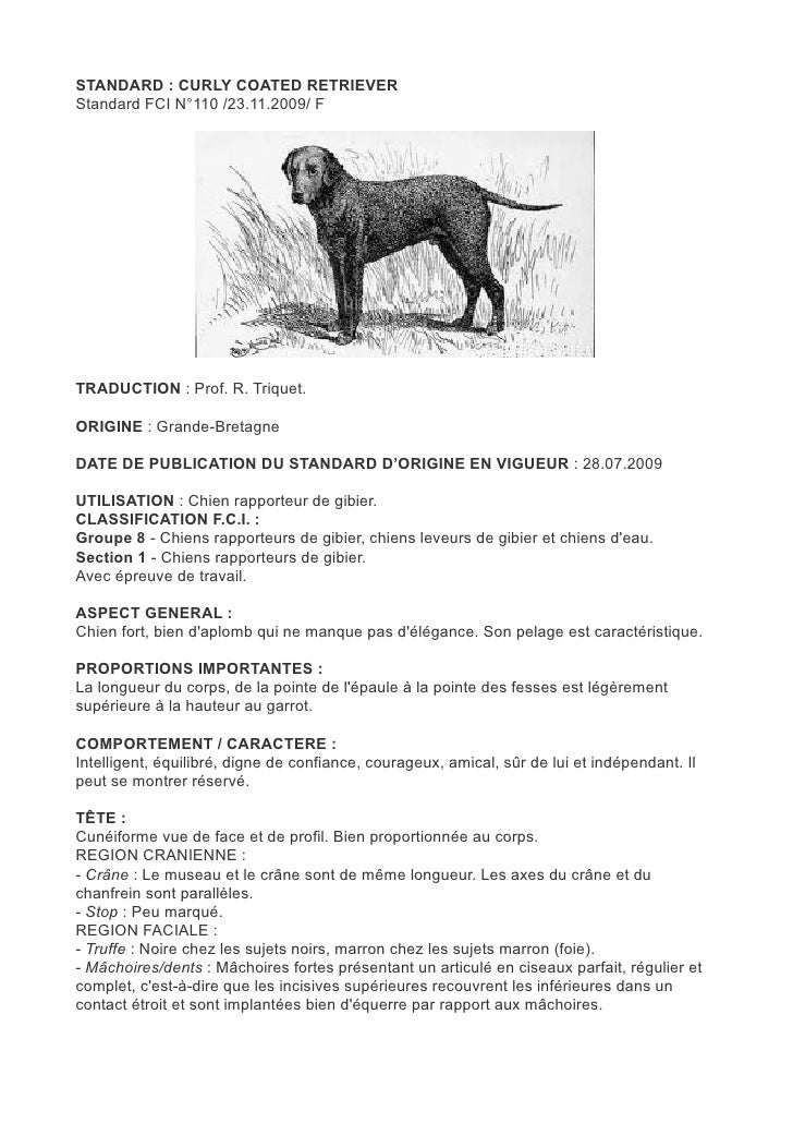 STANDARD : CURLY COATED RETRIEVERStandard FCI N°110 /23.11.2009/ FTRADUCTION : Prof. R. Triquet.ORIGINE : Grande-BretagneD...