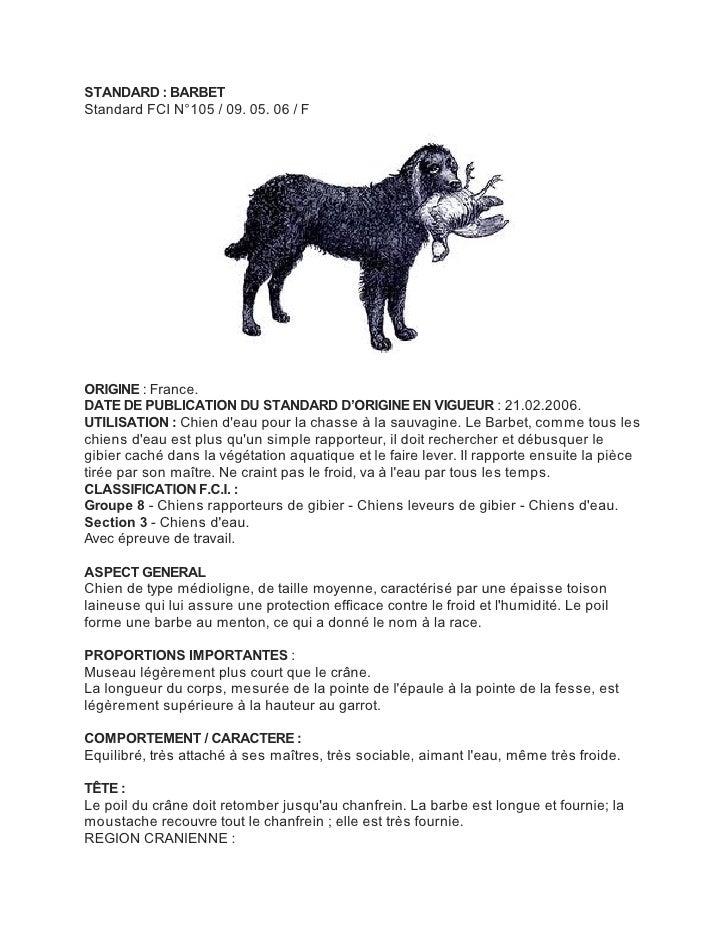 STANDARD : BARBETStandard FCI N°105 / 09. 05. 06 / FORIGINE : France.DATE DE PUBLICATION DU STANDARD D'ORIGINE EN VIGUEUR ...