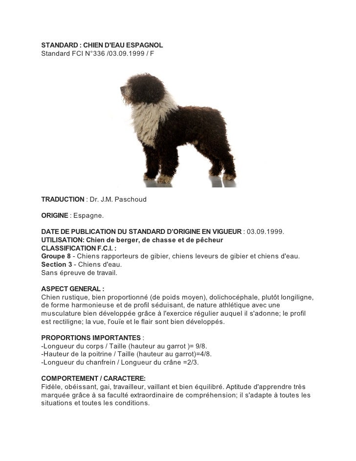STANDARD : CHIEN DEAU ESPAGNOLStandard FCI N°336 /03.09.1999 / FTRADUCTION : Dr. J.M. PaschoudORIGINE : Espagne.DATE DE PU...
