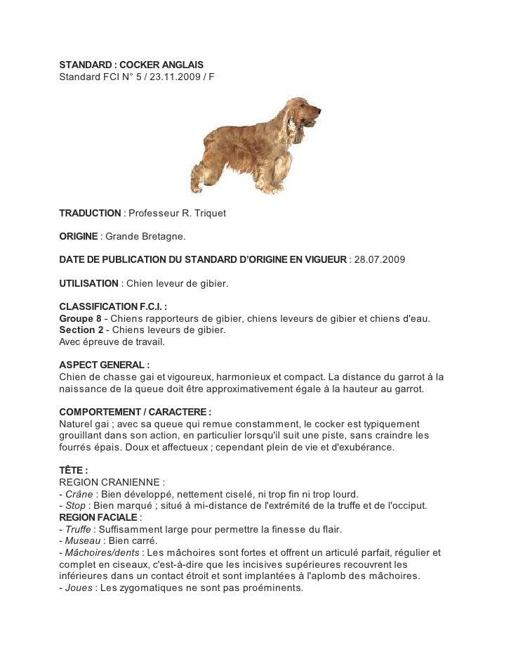 STANDARD : COCKER ANGLAISStandard FCI N° 5 / 23.11.2009 / FTRADUCTION : Professeur R. TriquetORIGINE : Grande Bretagne.DAT...