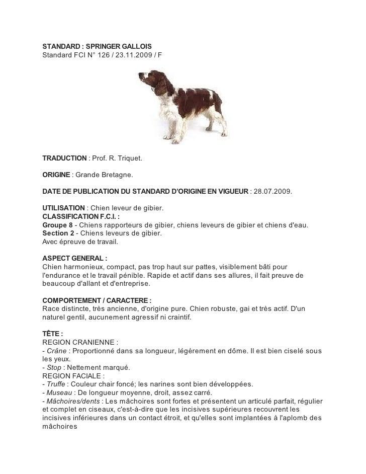 STANDARD : SPRINGER GALLOISStandard FCI N° 126 / 23.11.2009 / FTRADUCTION : Prof. R. Triquet.ORIGINE : Grande Bretagne.DAT...