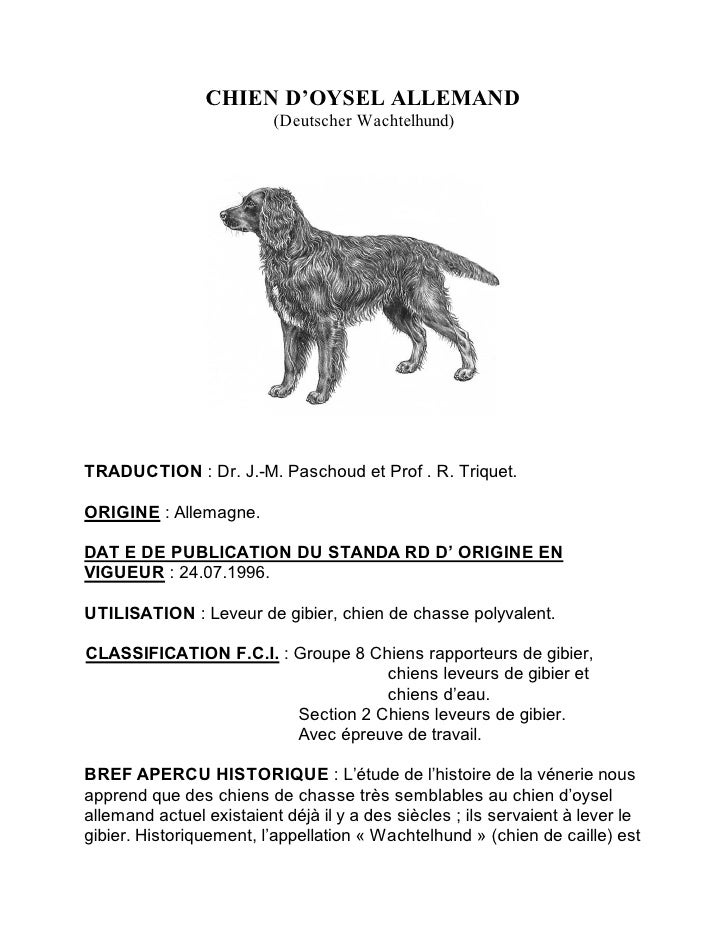 CHIEN D'OYSEL ALLEMAND                          (Deutscher Wachtelhund)TRADUCTION : Dr. J.-M. Paschoud et Prof . R. Trique...