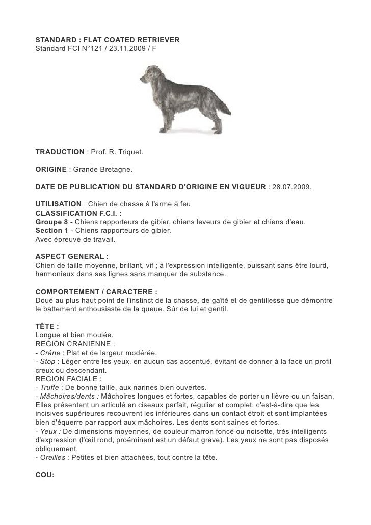 STANDARD : FLAT COATED RETRIEVERStandard FCI N°121 / 23.11.2009 / FTRADUCTION : Prof. R. Triquet.ORIGINE : Grande Bretagne...
