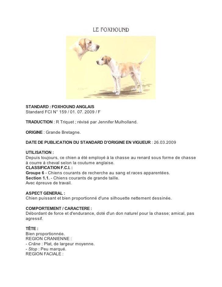 STANDARD : FOXHOUND ANGLAISStandard FCI N° 159 / 01. 07. 2009 / FTRADUCTION : R Triquet ; révisé par Jennifer Mulholland.O...
