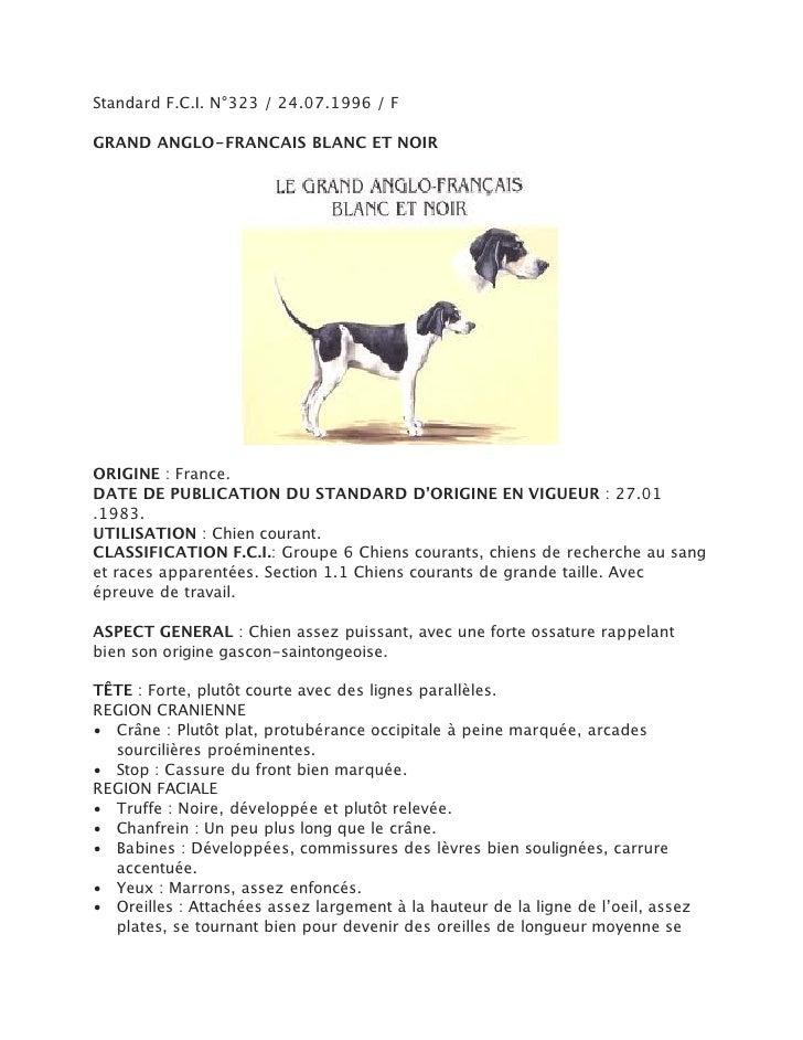 Standard F.C.I. N°323 / 24.07.1996 / FGRAND ANGLO-FRANCAIS BLANC ET NOIRORIGINE : France.DATE DE PUBLICATION DU STANDARD D...
