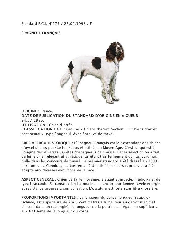 Standard F.C.I. N°175 / 25.09.1998 / FÉPAGNEUL FRANÇAISORIGINE : France.DATE DE PUBLICATION DU STANDARD D'ORIGINE EN VIGUE...