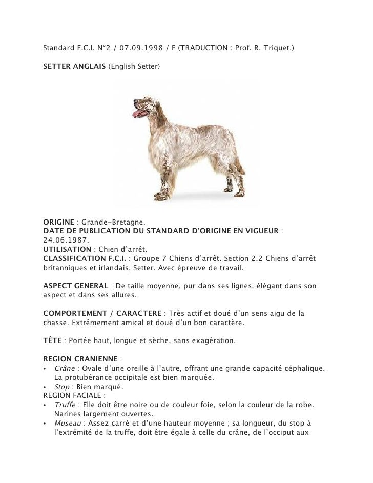 Standard F.C.I. N°2 / 07.09.1998 / F (TRADUCTION : Prof. R. Triquet.)SETTER ANGLAIS (English Setter)ORIGINE : Grande-Breta...