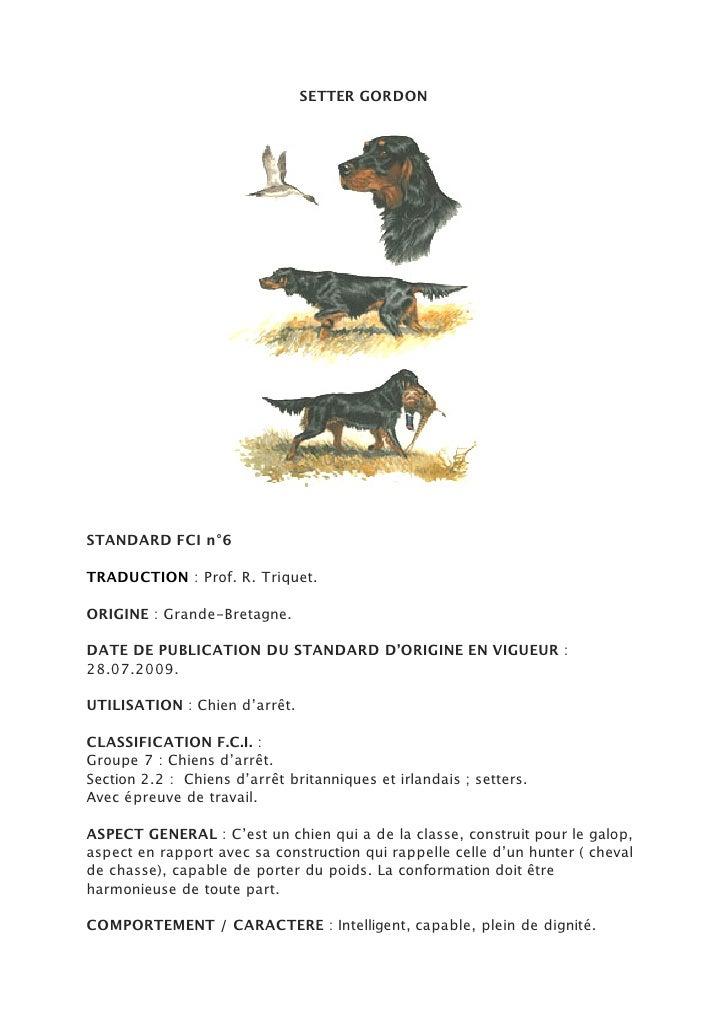 SETTER GORDONSTANDARD FCI n°6TRADUCTION : Prof. R. Triquet.ORIGINE : Grande-Bretagne.DATE DE PUBLICATION DU STANDARD D'ORI...