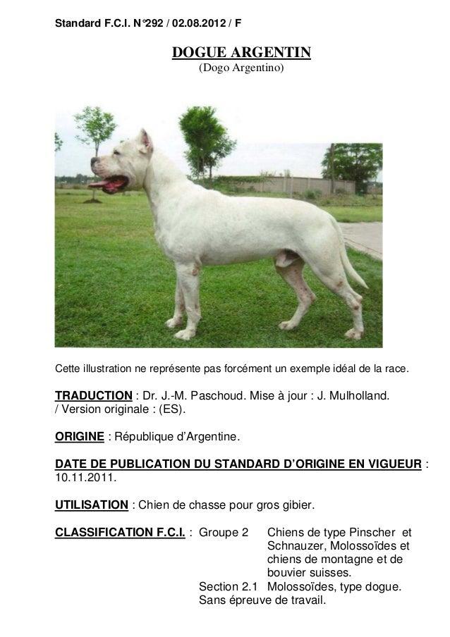 Standard F.C.I. N°292 / 02.08.2012 / F  DOGUE ARGENTIN (Dogo Argentino)  Cette illustration ne représente pas forcément un...