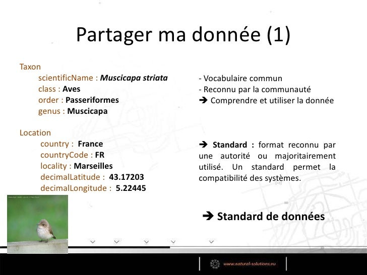 Partager ma donnée (1)<br />Taxon<br />scientificName : Muscicapastriata<br />class:Aves<br />order : Passeriformes <br />...