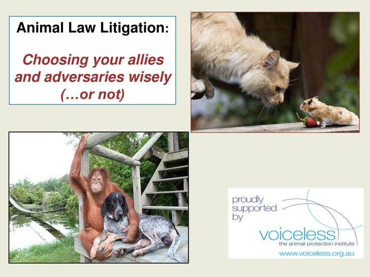 Animal Law Litigation: Choosing your alliesand adversaries wisely      (…or not)