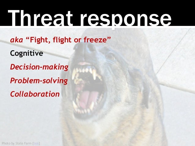 """Photo by State Farm [link] Threat response aka """"Fight, flight or freeze"""" Cognitive Decision-making Problem-solving Collabo..."""