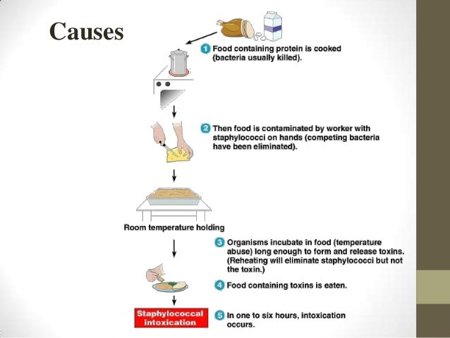Food Poisoning Mechanism