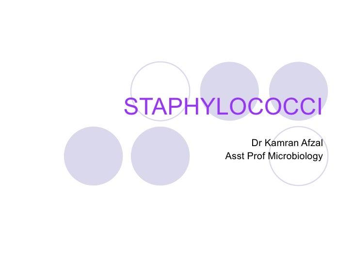 STAPHYLOCOCCI Dr Kamran Afzal Asst Prof Microbiology
