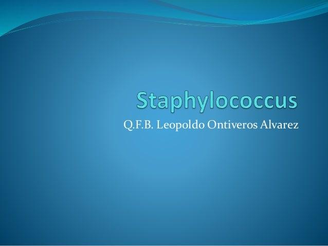 Q.F.B. Leopoldo Ontiveros Alvarez